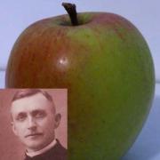 Apfelpfarrer Aigner