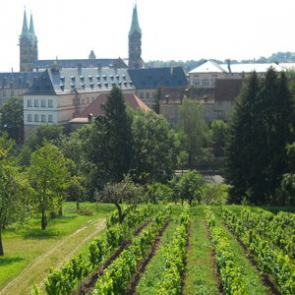 Weinberg am Michaelsberg Bamberg
